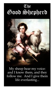 Copyright Good Shepherd cover
